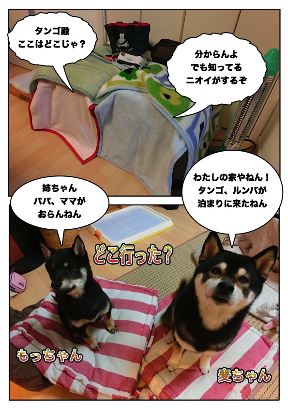 Page_1_2